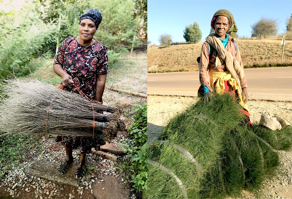 Women-with-Plant-brooms-web.jpg