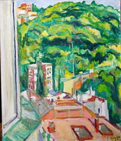 Vista de Vallcarca (3)