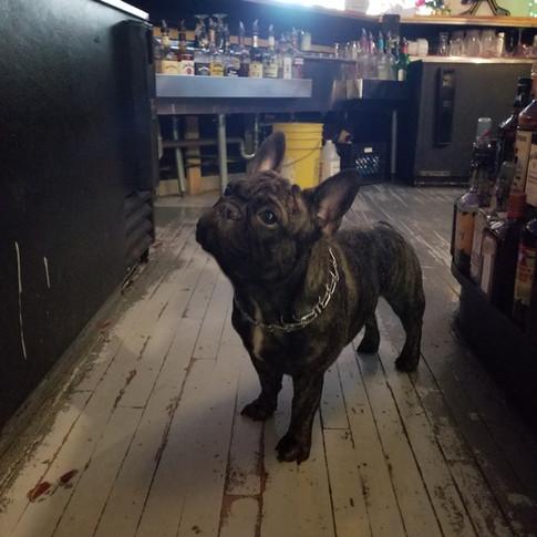 Ralph bartending
