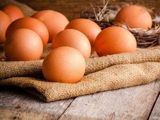 Barn Yard Eggs