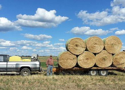 Gary bailing our own farm grown organic hay for next winter