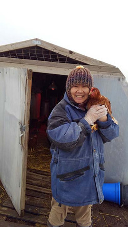 Tending to the chickens in winter