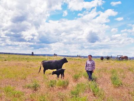 Rocky Ridge Ranch Newsletter - Jun 14