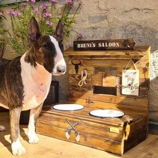 Saloon Futterbar für Hunde & Katzen