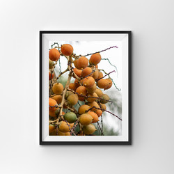 Singapore Peaches