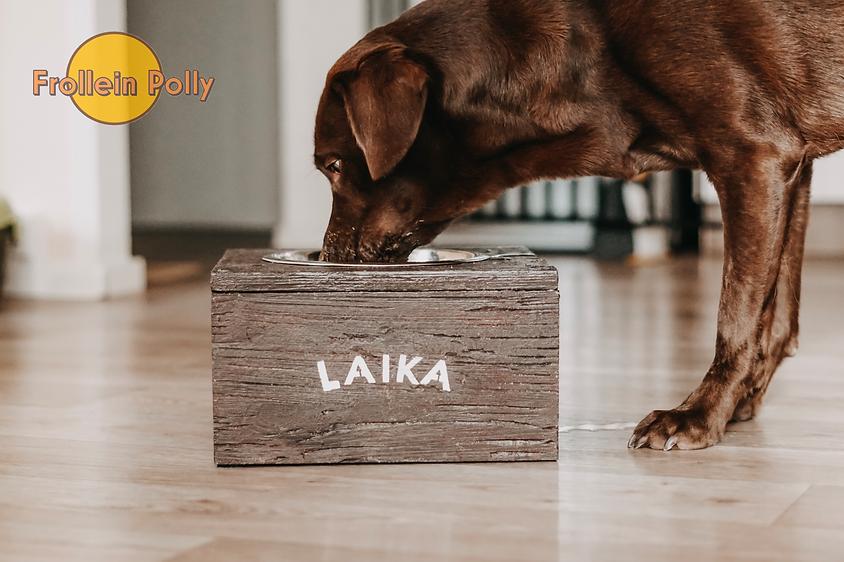 erhöhte Futterbars für Hunde und Katzen, Fressbar, Futterstation für große Hunde, erhöhter Katzennapf