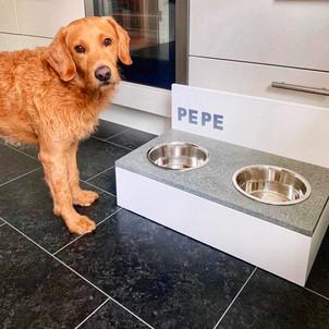 Pepe mit Futternapf.jpeg
