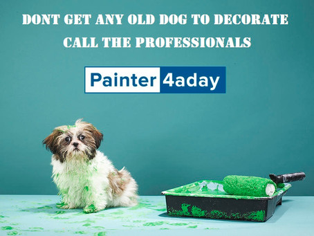 Decorating made plain and simple with Painter4aday.ie