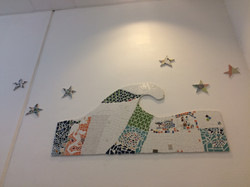 Stars and Waves RSS Amager