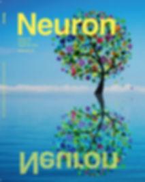 neuron_99_4_4c.jpg