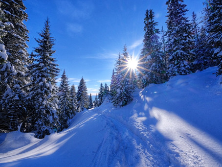 Na lyžiach na Chatu pod Suchým