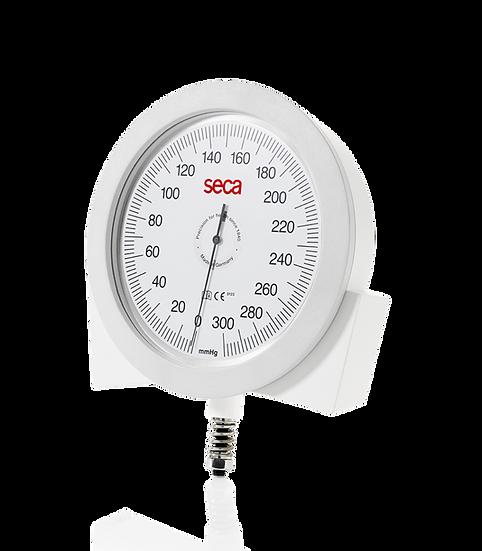 sphygmomanometer wall model