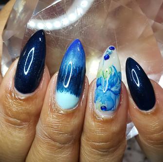 Hibiscus & Blue Waters