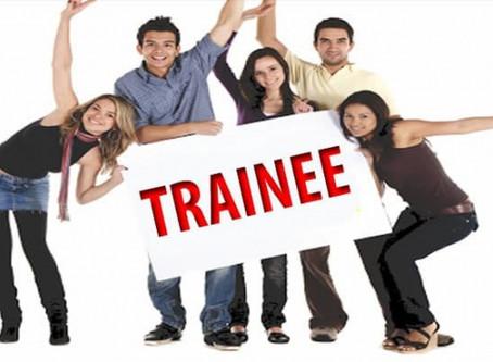 Programas de Trainee 2020 com inscrições abertas