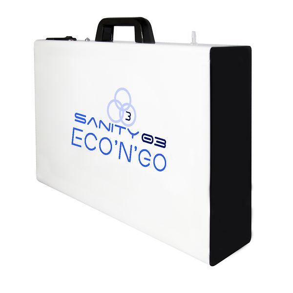 Sanity03 - Eco'N'Go.jpg
