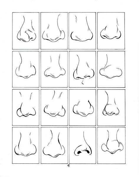 noses4.jpg
