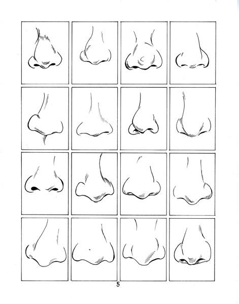 noses5.jpg