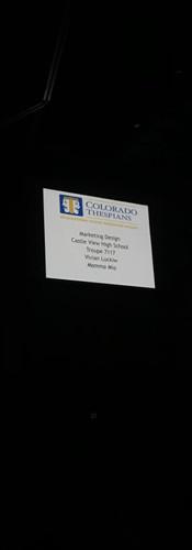 ThesCon Mainstage Recognition - Vivian L.