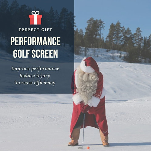 Performance Golf Screen - Christmas special