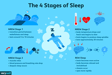 the-four-stages-of-sleep-2795920_FINAL-5