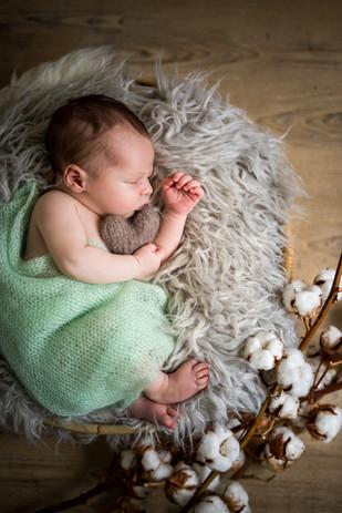 photographe bébé Doué en Anjou