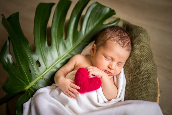 photographe nouveau-né Cholet
