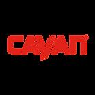 Cayan Logo-250x250.png