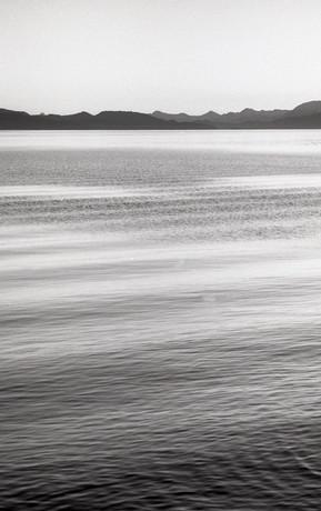 Lago planchado vert.jpg