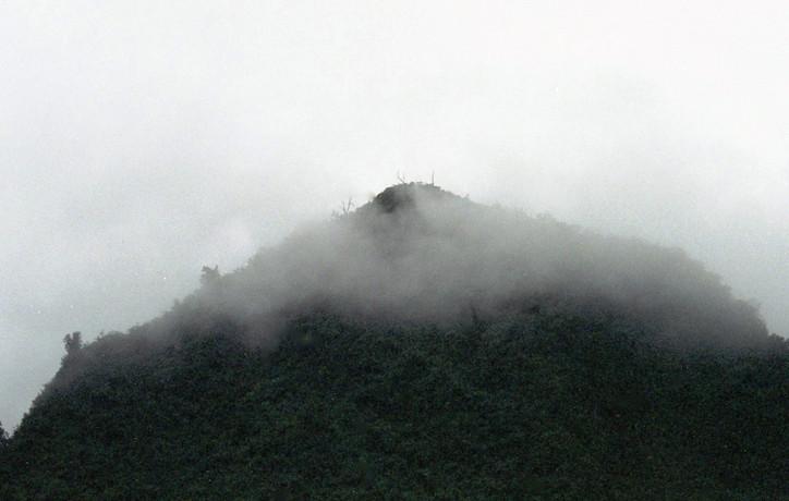Monte neblina ecuador.jpg