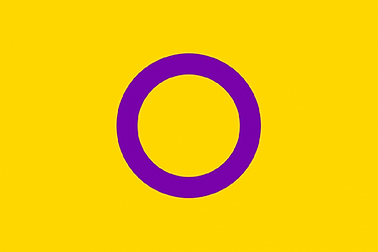 0_The-Intersex-Pride-Flag.png