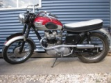 triumph for sale 001.JPG