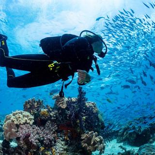 raja-ampat-diving.jpg
