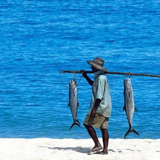 CLTMB-Fishing21.jpg
