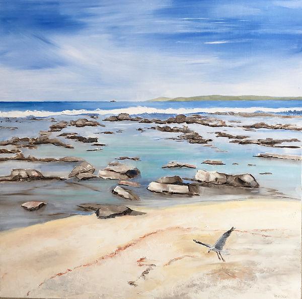 Shark Bay, Broulee.jpeg