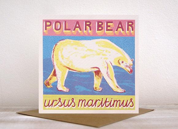 An Animal ABC - P is for Polar Bear