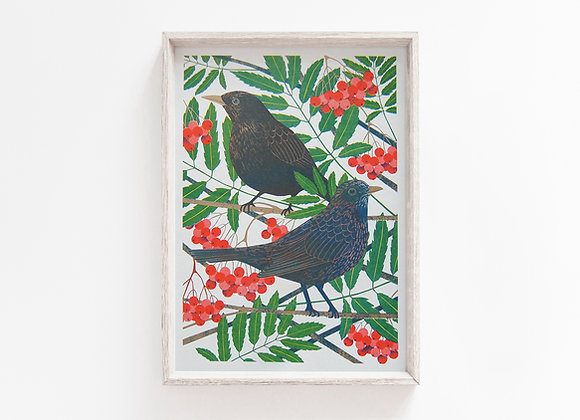 Blackbirds A4 Risograph Print
