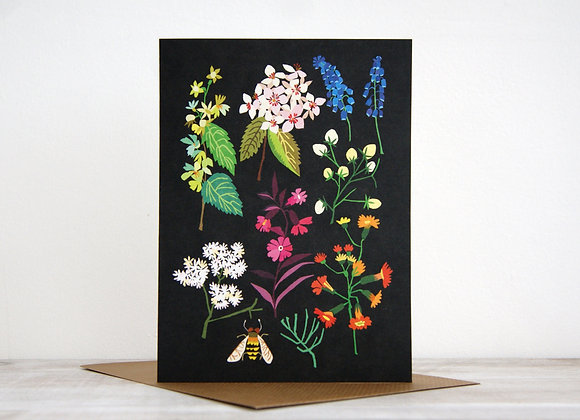 Wonderland collection - Printemps