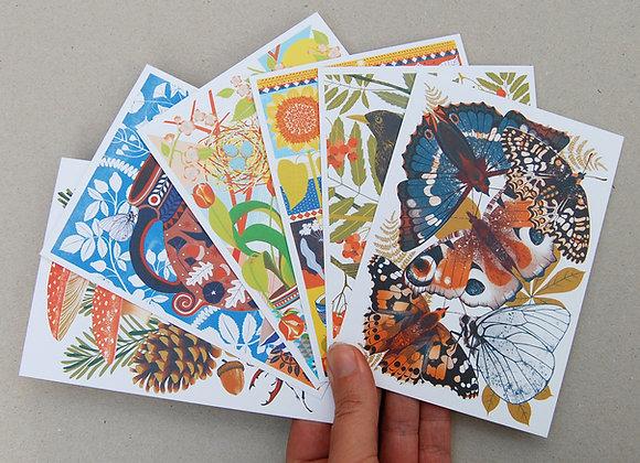British Wildlife Postcard Pack