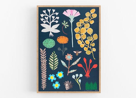 Botanical A3 Print