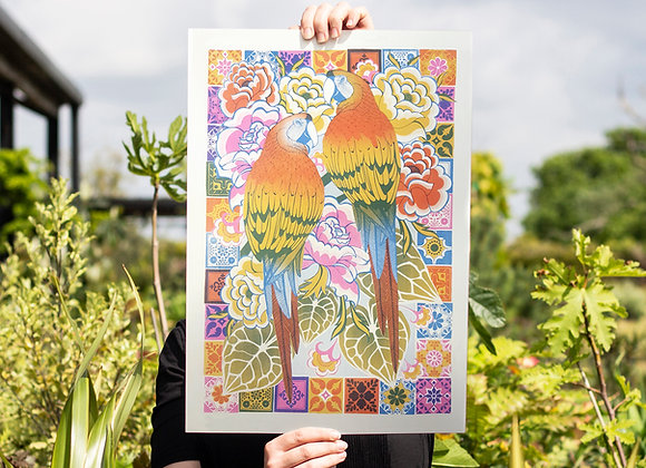 Macaws Screen Print