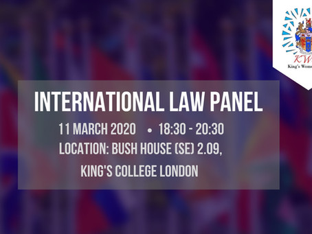 The Practice Of International Law Panel