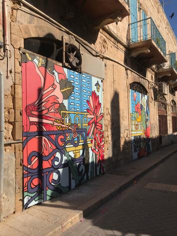 Al Salam Bougainvilliea Alley
