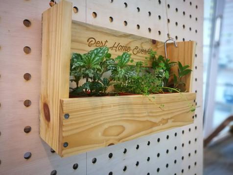 Multi plant box
