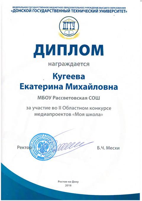 медиа проект школы дипломы_0004.jpg