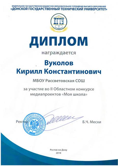 медиа проект школы дипломы_0003.jpg