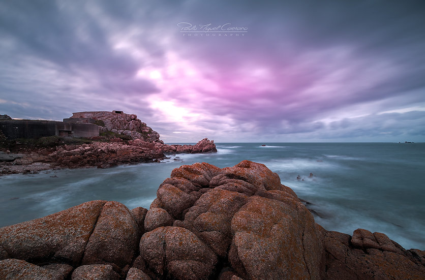 (Rolled) Into The Pink - Grande Rocques - Guernsey (PCO2448.2)