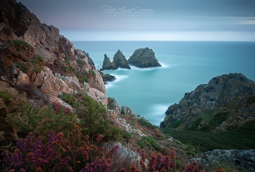 (Rolled) Milky Pea Stacks, St Martins (PMC5061)