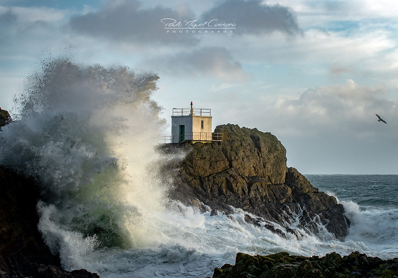 (Rolled) The Clash - Jerbourg Foghorn - St. Martins - Guernsey (PCO4911)