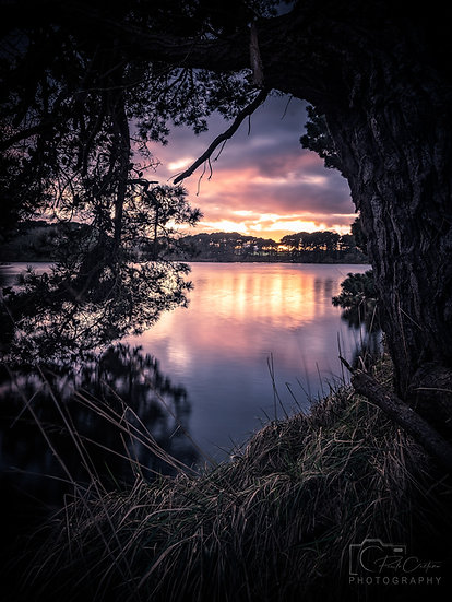 (Canvas) Guernsey Dreaming - St. Saviours Reservoir - Guernsey (PCP06368)