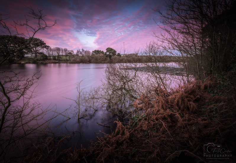 Pink Sunset at The Reservoir, St Saviours (PCP0594)